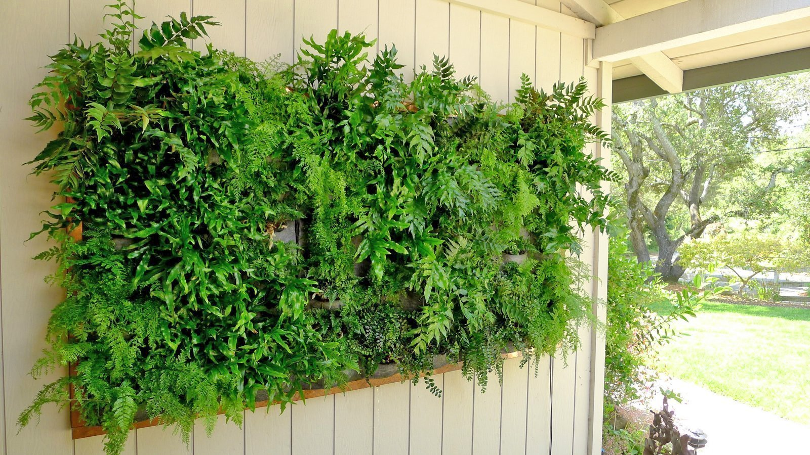 Chris Bribach, Plants On Walls. Florafelt Vertical Garden.