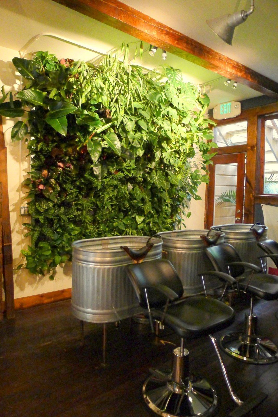 Population hair salon vertical jungle plants on walls for Garden salon
