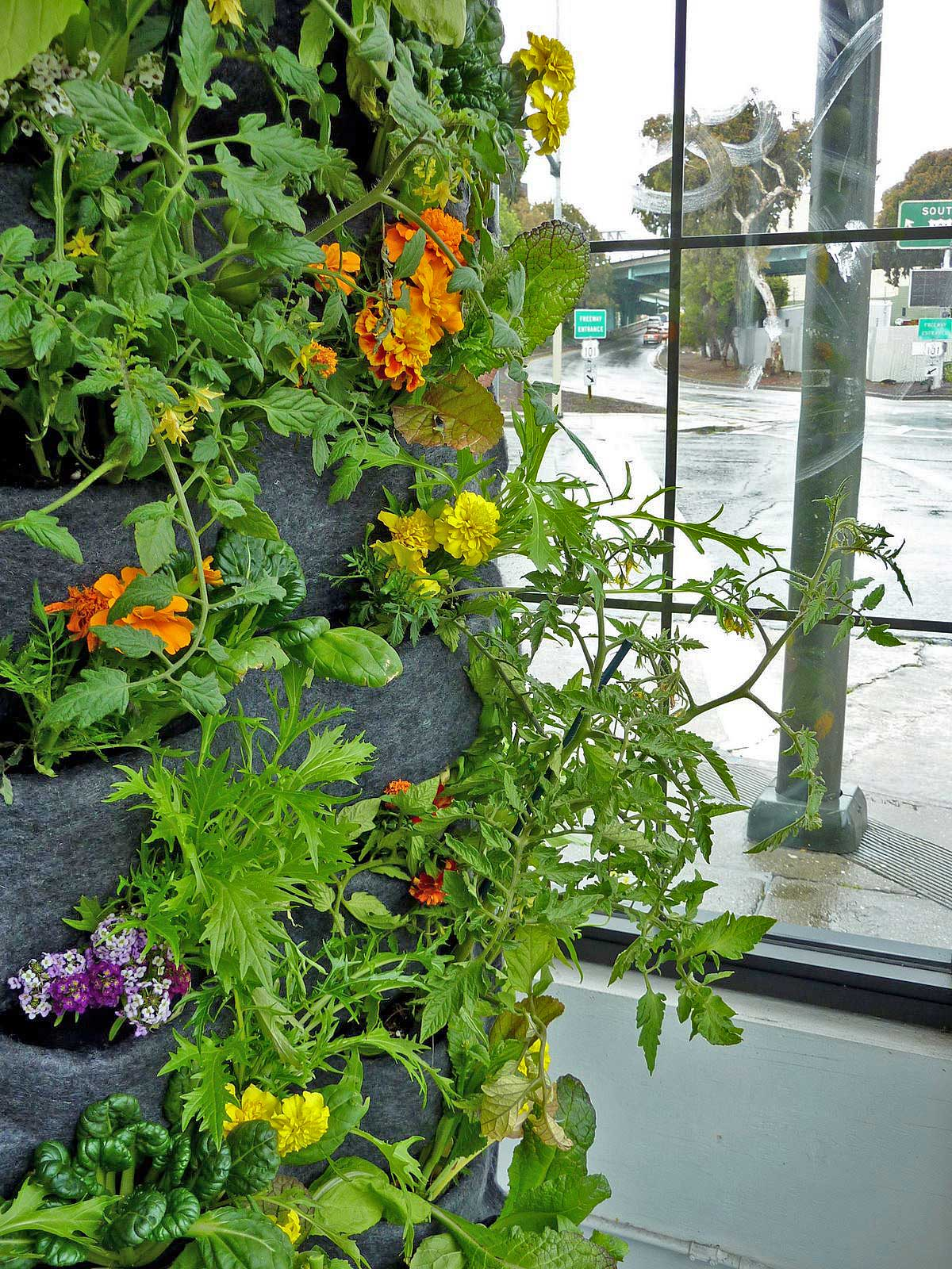 Florafelt Vertical Garden Aquaponic Tower 4