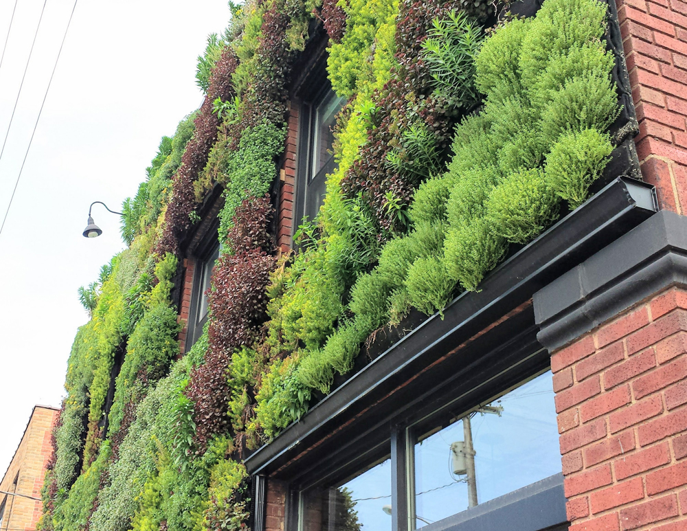 Florafelt Living Wall by Architect Marika-Shiroi Clark for Hingetown neighborhood in Cleveland.