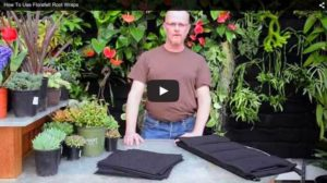How to Use Florafelt Vertical Garden Planters at the San Francisco Conservatory of Flowers by Chris Bribach