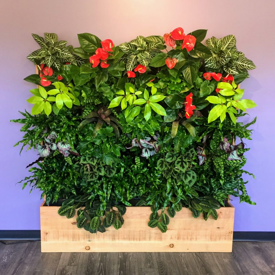 Florafelt Compact Vertical Garden Kits (side by side) by Rebecca Sheedy Floraform Design Seattle.