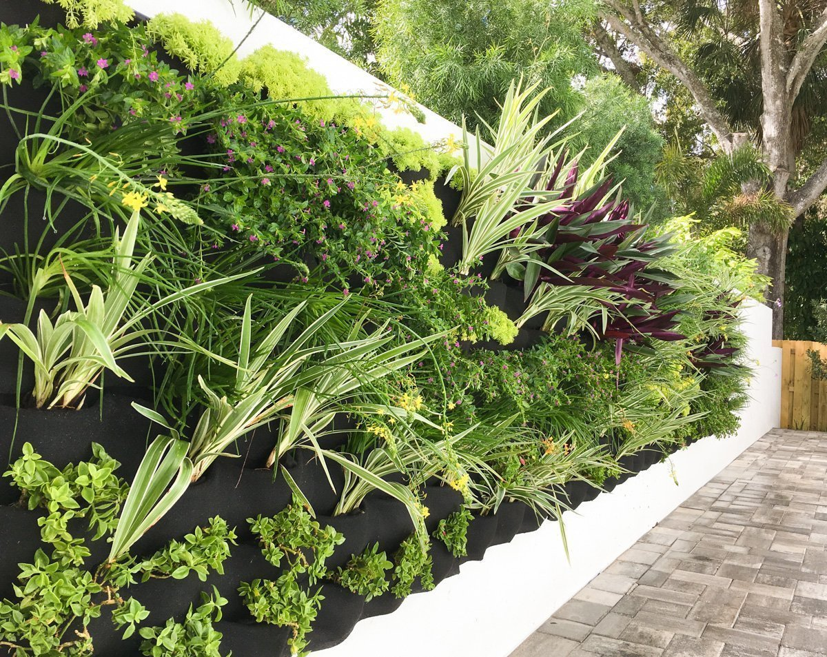 Florafelt Vertical Garde by Lucias Living Walls. Doral, Florida.