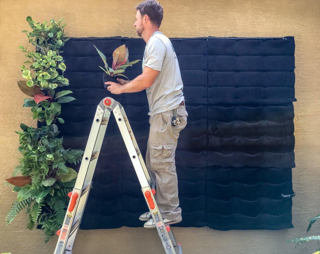 Florafelt Living Wall by Seth Stottlemyer of Oasis Gardenscapes in Sarasota, Florida.
