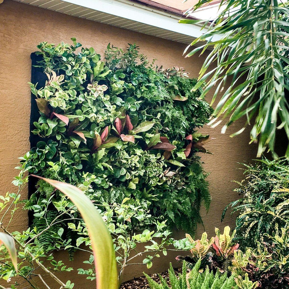 Entryway Vertical Garden by Oasis Gardensapes