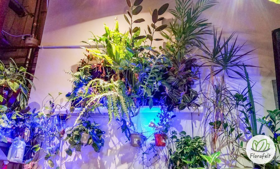 Florafelt Vertical Garden by Adam Clark at Outpost India Basin, San Francisco.