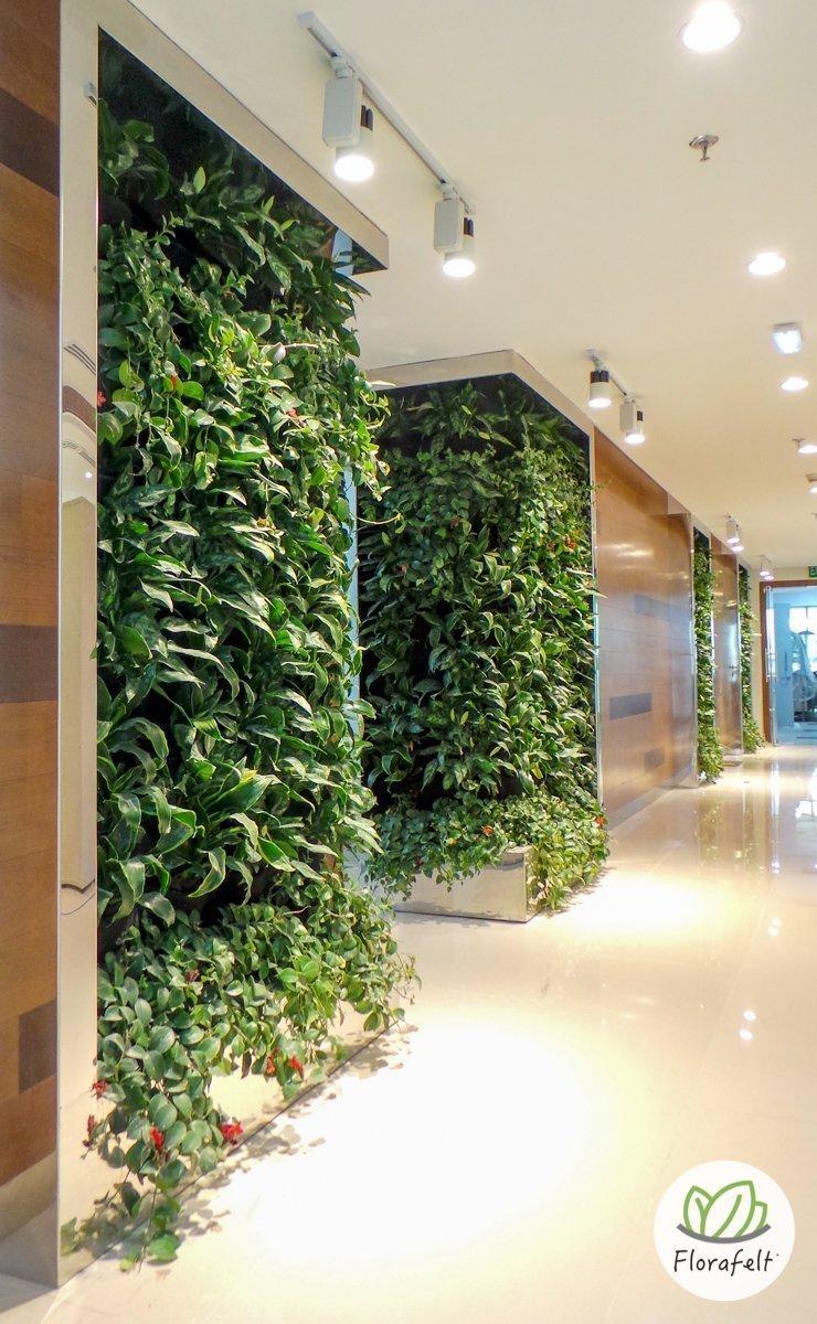 Florafelt vertical garden by terragarden kuwait plants for Garden design kuwait