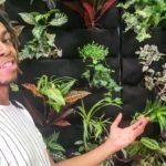 Florafelt Vertical Garden for Milken Mills High School