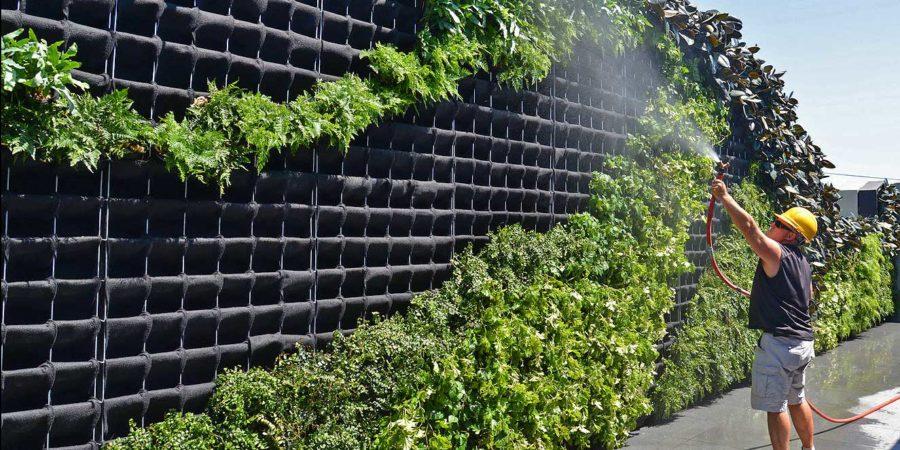 Florafelt Pro System Wire Planted