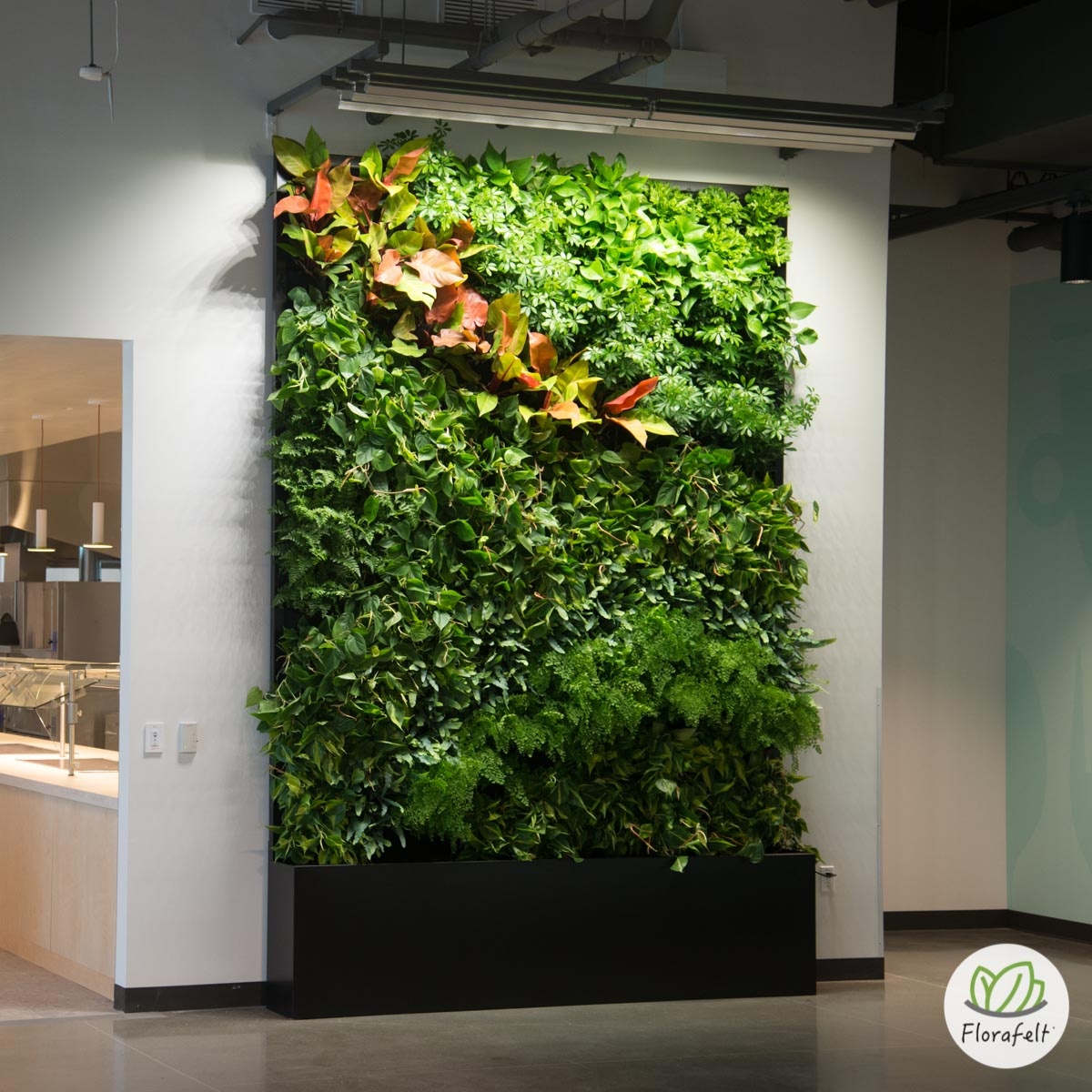 Superbe Florafelt Living Wall For Google By Planted Design.