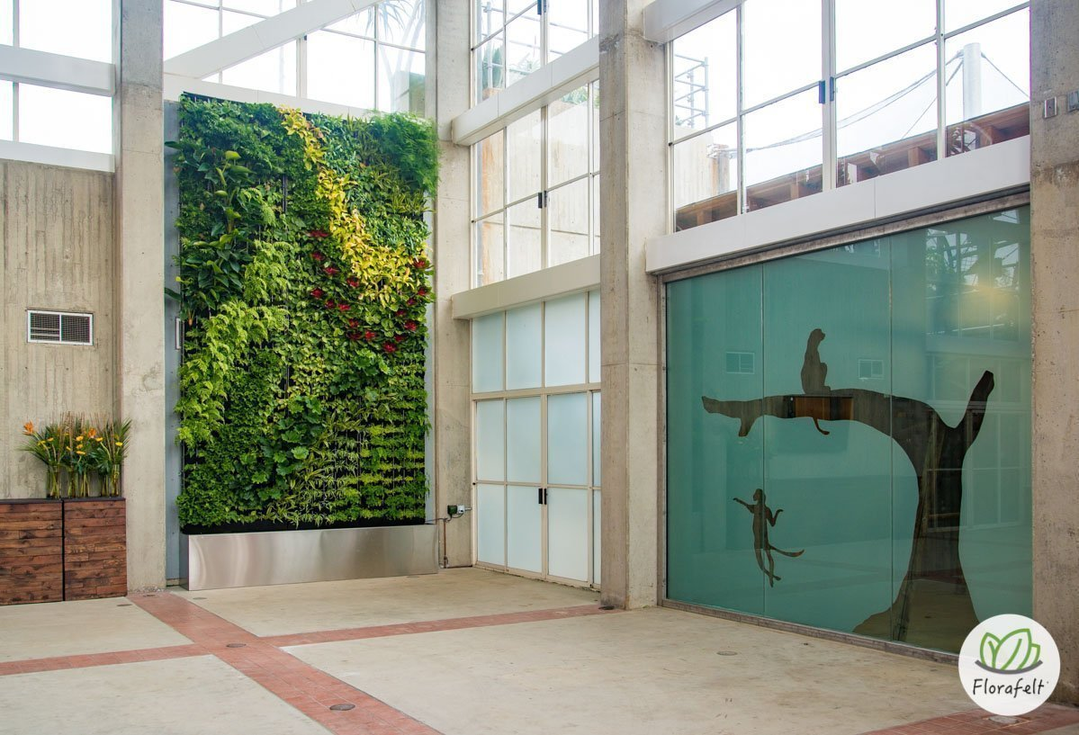 Florafelt Living Wall at San Francisco Zoo by Planted Design.