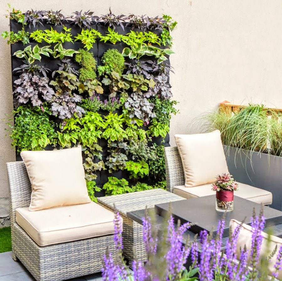 Posted on March 1, 2018 Accent Living Wall by Emma Lam of A Small Green Space in Jersey City Florafelt Living Wall by Emma Lam of A Small Green Space, Jersey City. (photo www.meganmaloy.com) Florafelt Living Wall by Emma Lam of A Small Green Space, Jersey City. (photo meganmaloy.com)