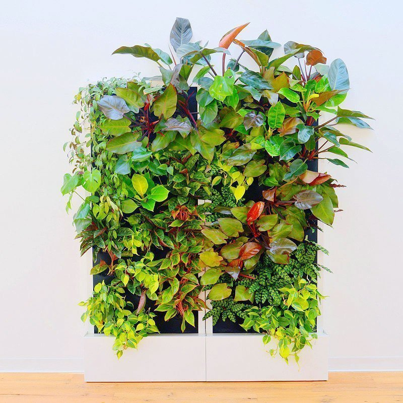 Florafelt Recirc 33-Pocket Wall Units by Chris Bribach of Plants On Walls