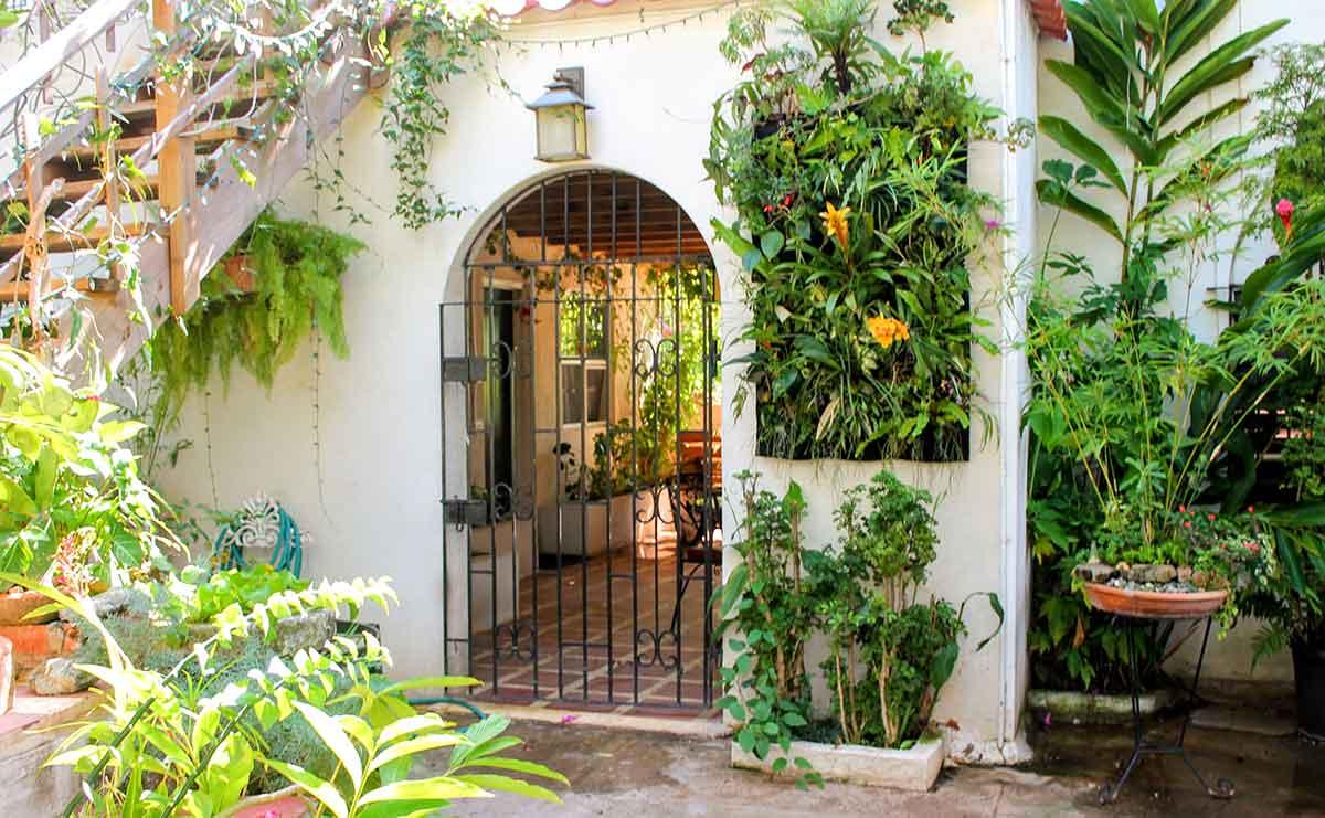 Botanical Vertical Masterpiece for a Miami Courtyard. Created with a Florafelt 24-Pocket Vertical Garden Planter.