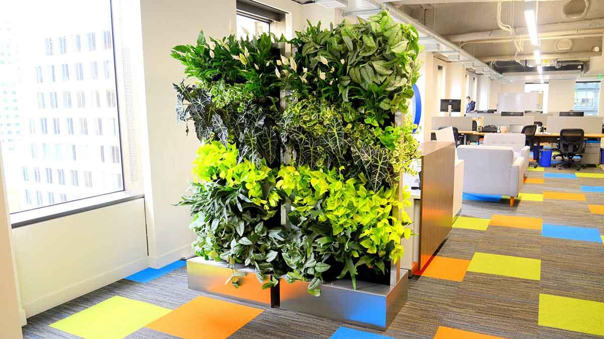 Florafelt Recirc vertical gardens by Rainforest Plants for Trifacta San Francisco