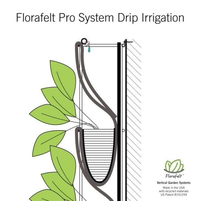 Florafelt Pro System drip irrigation placement.