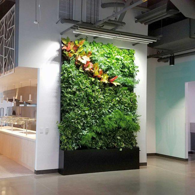 Florafelt Pockets custom recirc vertical garden for Google Sunnyvale Campus by Planted Design.