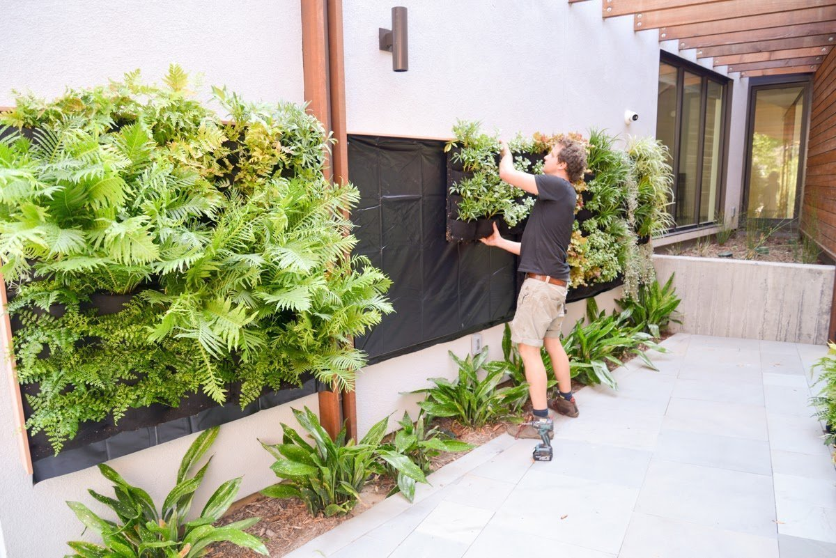 Florafelt Pockets Living Wall System Install by Planted Design