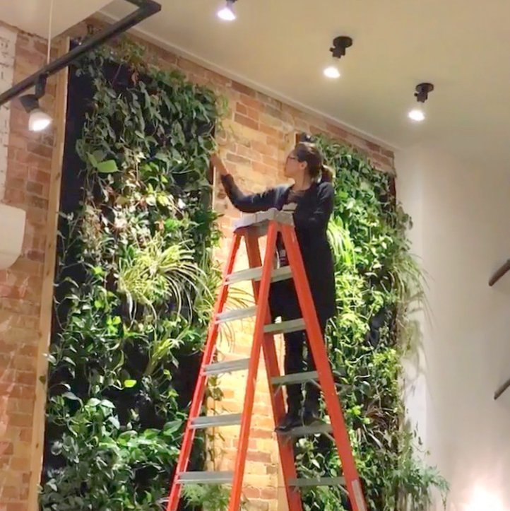 Florafelt Vertical Garden by Hande Ersoy. Untitled by Flaunt Boutique, Toronto.