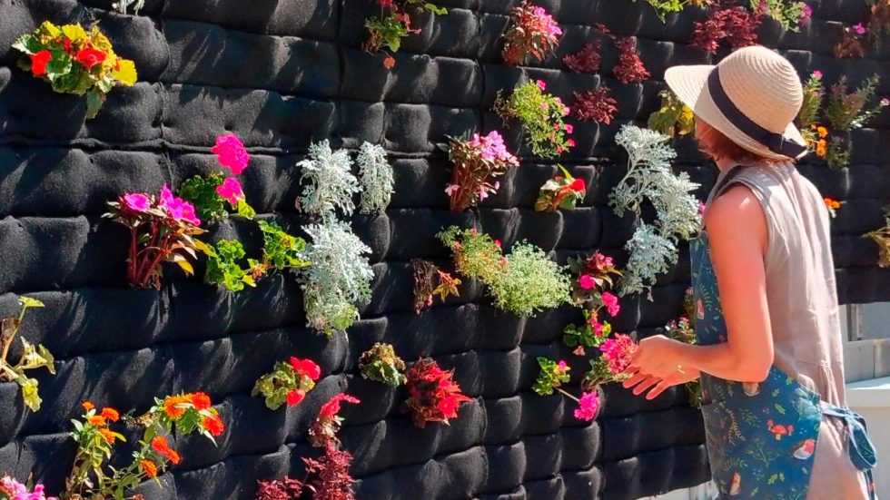 Florafelt Pockets Living Wall for Angie's Garden Living Wall at Cleveland Clinic