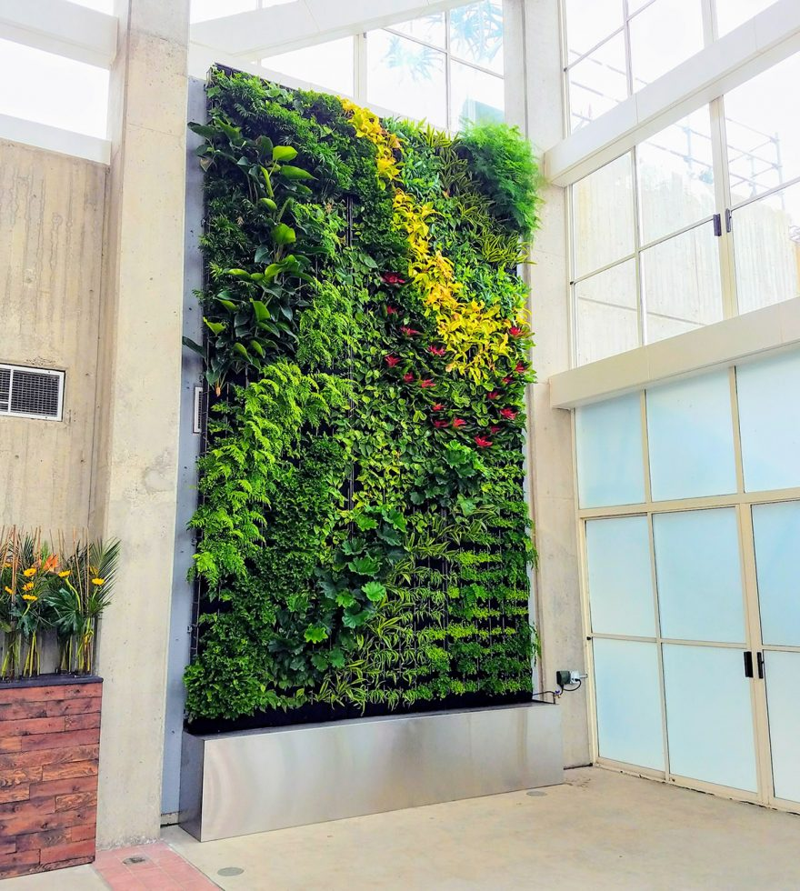 San Francisco Zoo vertical garden created with the Florafelt Pro System. Plant design and installation by Planted Design.