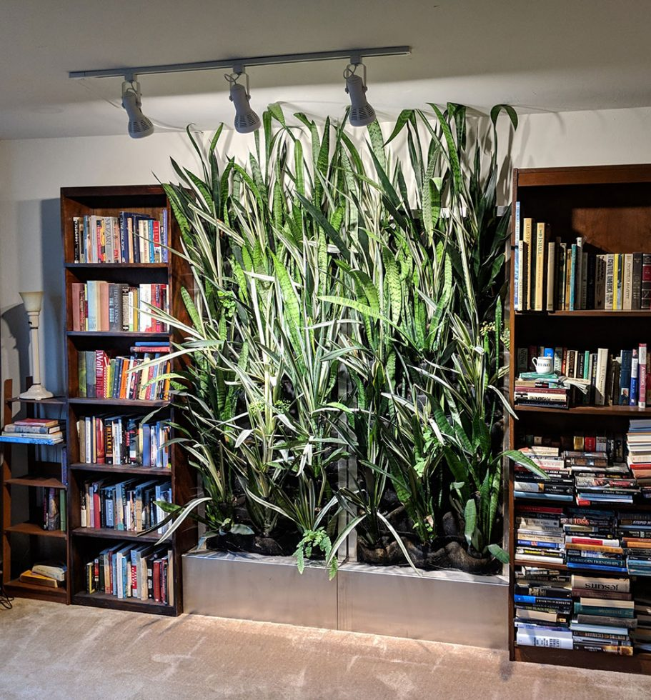 Florafelt Recirc 33-Pocket Units planted with Sansevieria with LED lighting.