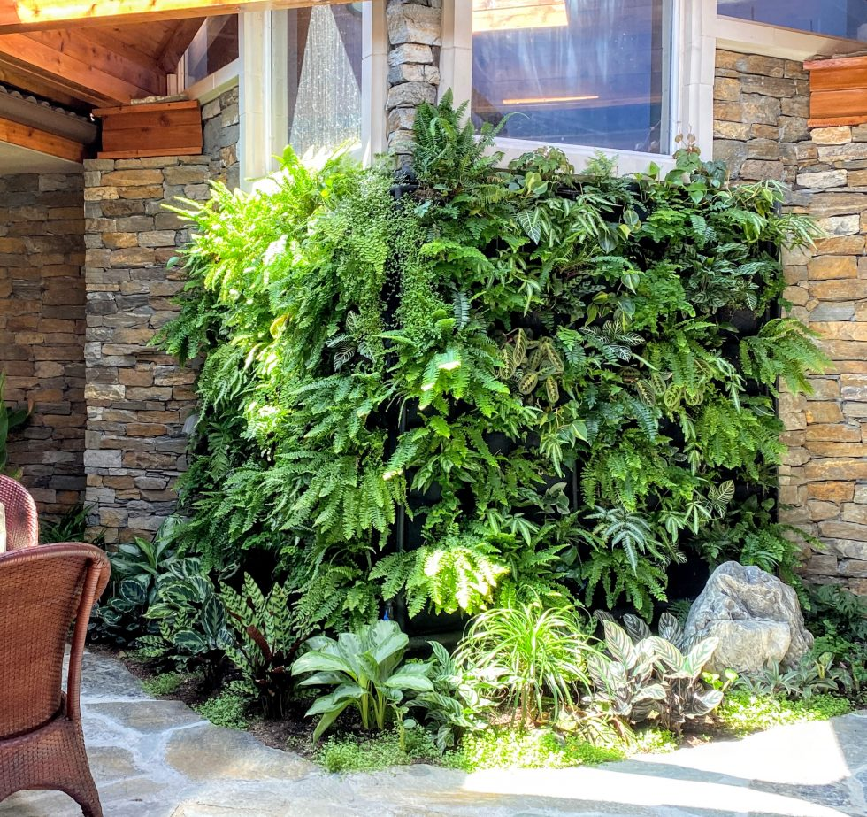 Florafelt Pockets living wall by Jack Barkley.